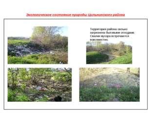 Экологическое состояние природы Цильнинского района Территория района сильно