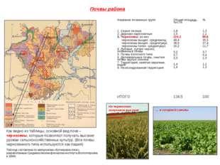 Почвы района Как видно из таблицы, основной вид почв – черноземы, которые поз
