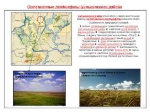 Остепненные ландшафты Цильнинского района Цильнинский район относится к север
