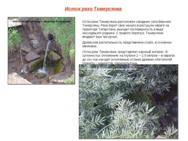 Исток реки Тимерсянка Нисходящий родник, с. Верхние Тимерсяны Исток реки Тиме...