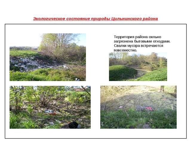 Экологическое состояние природы Цильнинского района Территория района сильно...