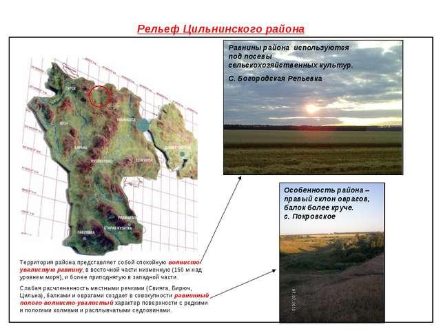 Рельеф Цильнинского района Территория района представляет собой спокойную вол...