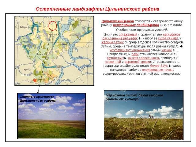 Остепненные ландшафты Цильнинского района Цильнинский район относится к север...