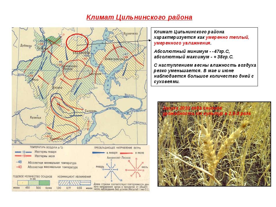 Климат Цильнинского района Климат Цильнинского района характеризуется как уме...