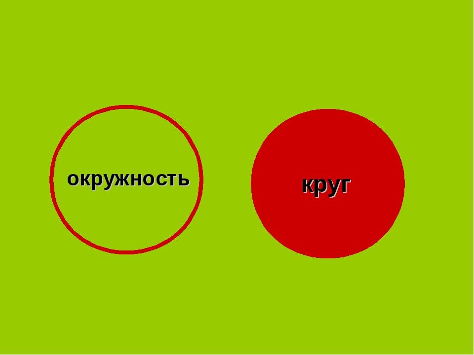 окружность круг