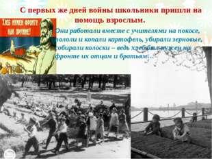 С первых же дней войны школьники пришли на помощь взрослым. Они работали вмес