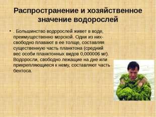 Распространение и хозяйственное значение водорослей . Большинство водорослей