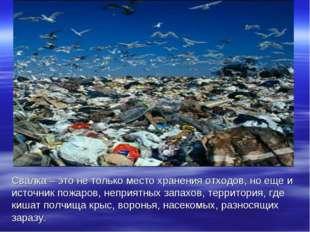 Свалка – это не только место хранения отходов, но еще и источник пожаров, неп