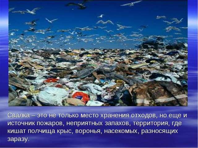Свалка – это не только место хранения отходов, но еще и источник пожаров, неп...