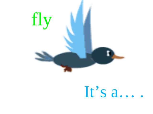 fly fly It's a… .