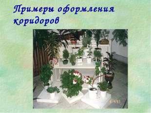 Примеры оформления коридоров
