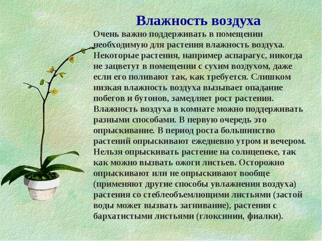 Влажность воздуха Очень важно поддерживать в помещении необходимую для растен...