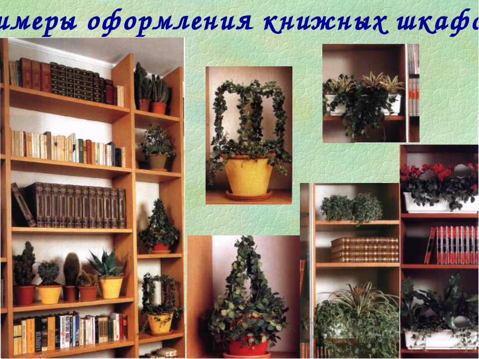 Примеры оформления книжных шкафов