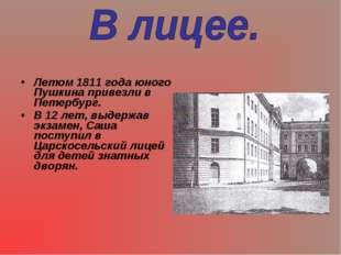 Летом 1811 года юного Пушкина привезли в Петербург. В 12 лет, выдержав экзаме