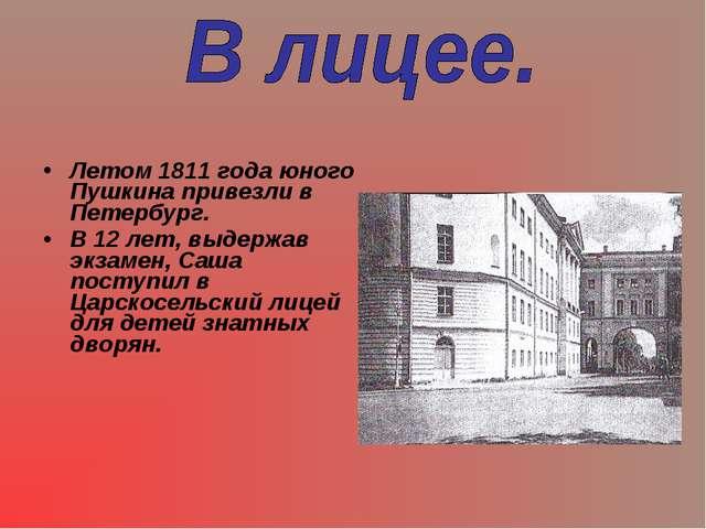 Летом 1811 года юного Пушкина привезли в Петербург. В 12 лет, выдержав экзаме...
