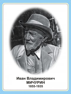 http://www.dou-shkola.ru/local/cache-vignettes/L240xH320/arton1615-858f9.jpg