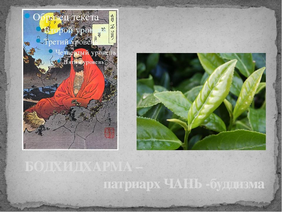 БОДХИДХАРМА – патриарх ЧАНЬ -буддизма