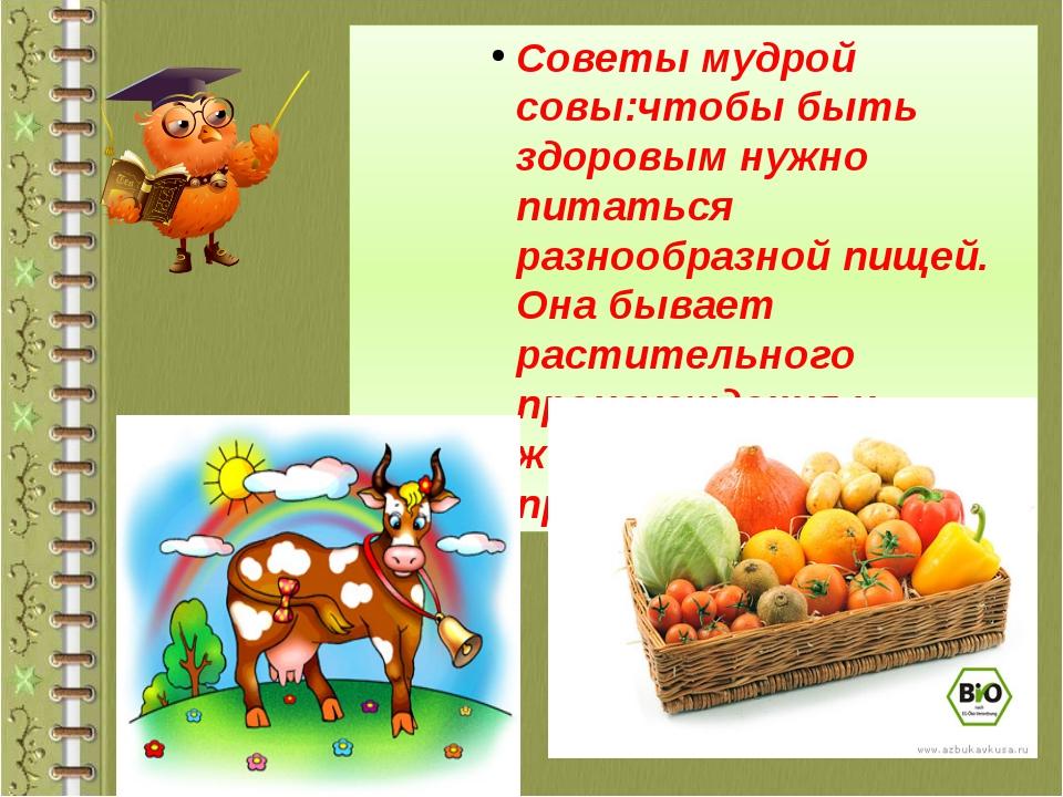 Советы мудрой совы:чтобы быть здоровым нужно питаться разнообразной пищей. Он...