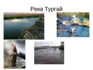 Река Тургай