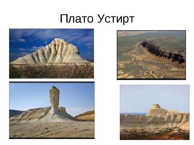 Плато Устирт