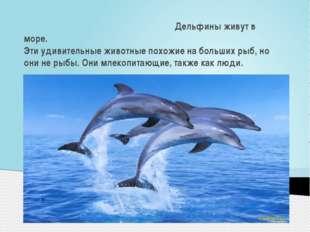 Дельфины живут в море. Эти удивительные животные похожие на больших рыб, но