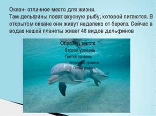 Океан- отличное место для жизни. Там дельфины ловят вкусную рыбу, которой пит