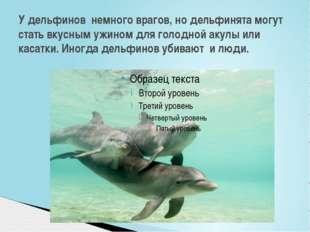 У дельфинов немного врагов, но дельфинята могут стать вкусным ужином для голо
