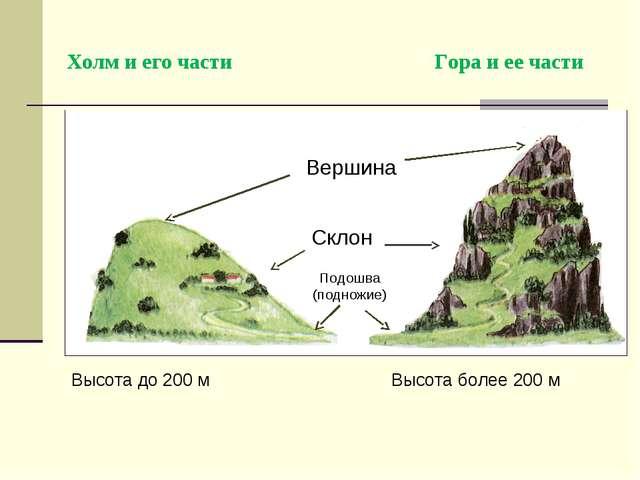 Холм и его части Гора и ее части Подошва (подножие) Склон Вершина Высота д...