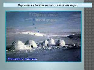 Строение из блоков плотного снега или льда.