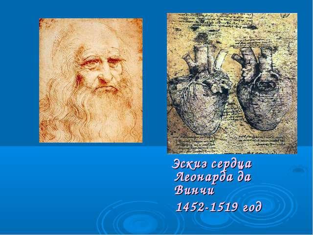 Эскиз сердца Леонарда да Винчи 1452-1519 год