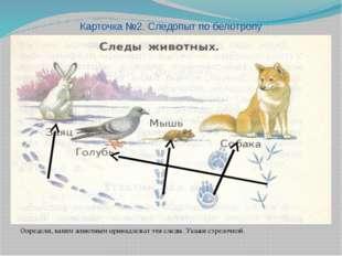 Определи, каким животным принадлежат эти следы. Укажи стрелочкой. Карточка №