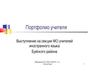 Ибрагимова Е.В., МОУ СОШ №1 г.п.п. Чистые Боры * Портфолио учителя Выступлени
