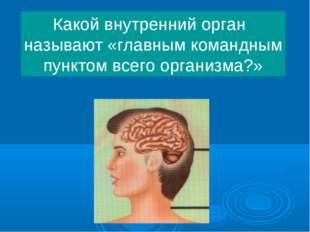 Какой внутренний орган называют «главным командным пунктом всего организма?»
