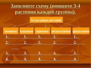 Заполните схему (впишите 3-4 растения каждой группы). 1. 1. 1. 1. 1. 2. 2. 2.