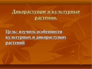 Дикорастущие и культурные растения. Цель: изучить особенности культурных и ди
