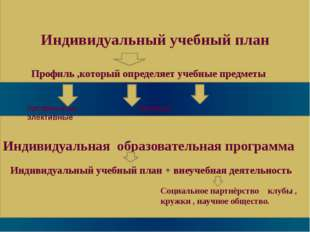 Индивидуальный учебный план Профиль ,который определяет учебные предметы проф