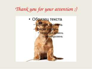 Thank you for your attention ;)