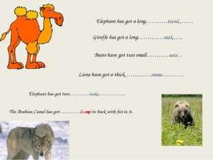 Elephant has got a long…………………… trunk Giraffe has got a long………………….. neck Be