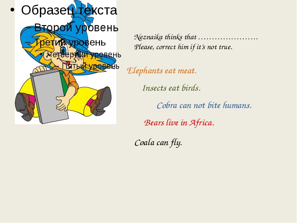 Neznaika thinks that …………………. Please, correct him if it's not true. Elephants...