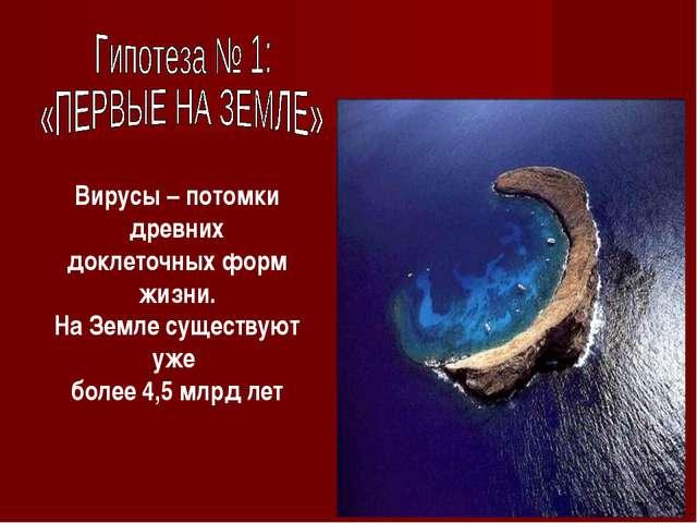 Вирусы – потомки древних доклеточных форм жизни. На Земле существуют уже боле...