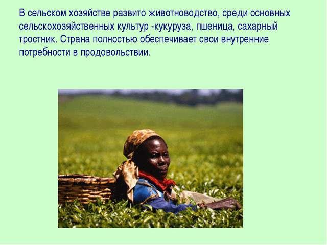 В сельском хозяйстве развито животноводство, среди основных сельскохозяйствен...