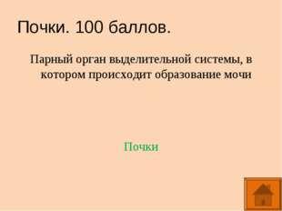 Почки. 100 баллов. Парный орган выделительной системы, в котором происходит о