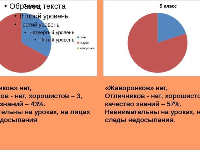 «Жаворонков» нет, Отличников - нет, хорошистов – 3, качество знаний – 43%. Н...