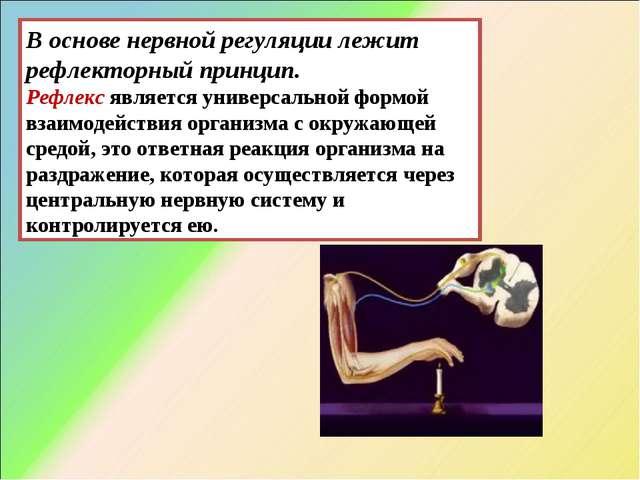 В основе нервной регуляции лежит рефлекторный принцип. Рефлексявляется униве...