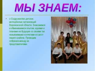 о Содружестве детских молодёжных организаций Воронежской области. Знакомимся