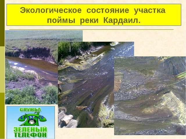 Экологическое состояние участка поймы реки Кардаил. 4 – 12 – 70