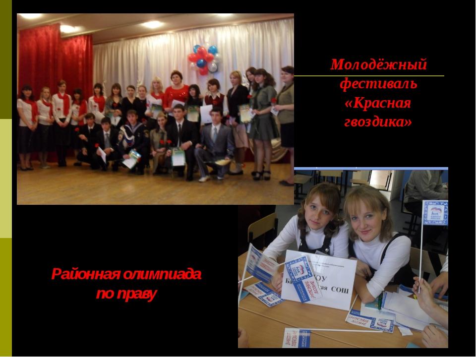 Районная олимпиада по праву Молодёжный фестиваль «Красная гвоздика»