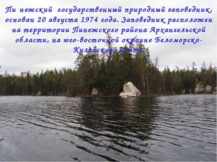 Пи́нежский государственный природный заповедник, основан 20 августа 1974 года