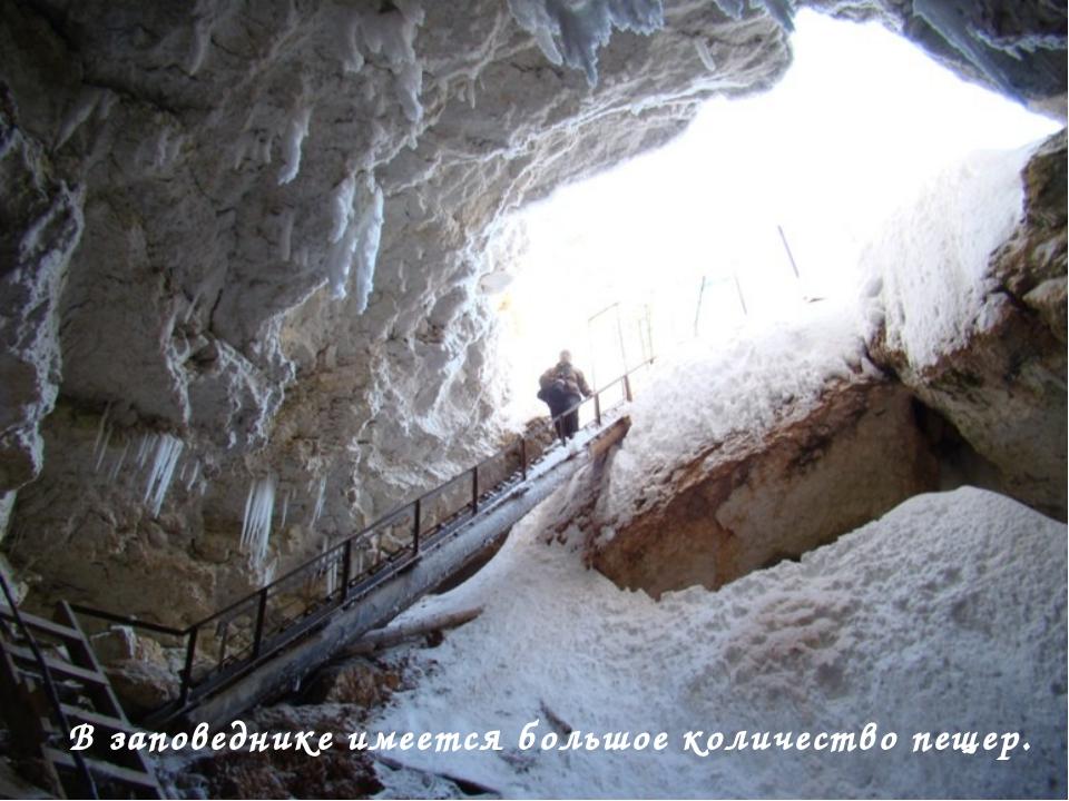 В заповеднике имеется большое количество пещер.