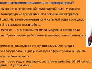 5.Как зависит жизнедеятельность от температуры? Рыбы — животные с непостоянно